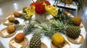 Выращиваем ананас в домашних условиях — секреты посадки и ухода